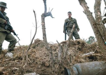 Territorio venezolano y Guerrilla colombiana