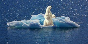 Cambio climático e irreversible