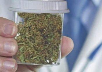 Cannabis y Panamá